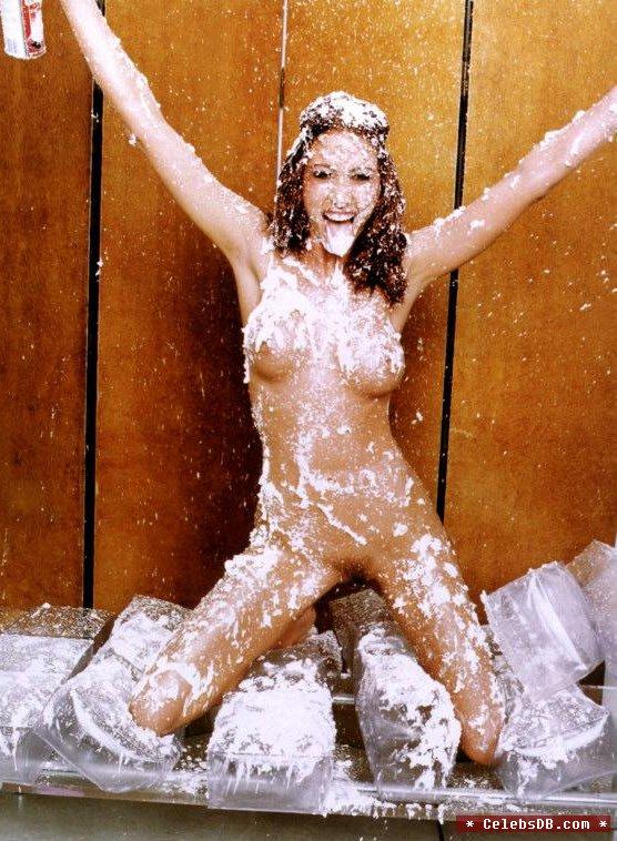 This brilliant Shannon elizabeth nude fakes consider